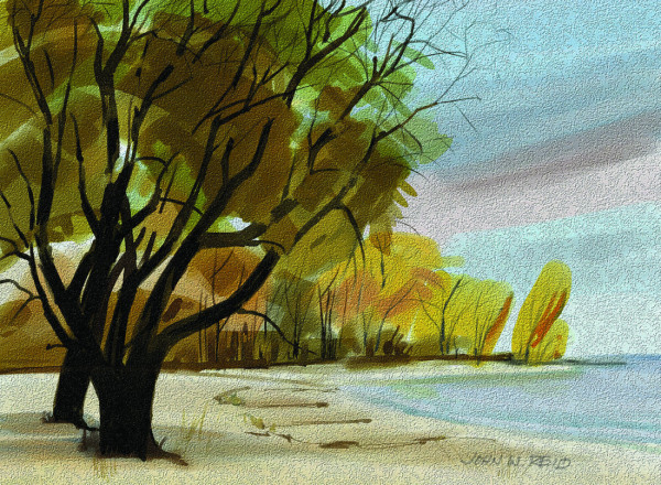 WILLOWS 8x11
